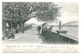 Alte Postkarte BONN Alter Zoll, 1908