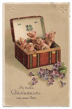 """Alte Lithografie Postkarte Neujahr """"DIE BESTEN GLÜCKWÜNSCHE ZUM NEUEN JAHRE""""  Fünf Schweine mit Glücksklee in einer Truhe,  1912"""