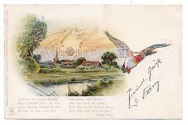 Alte Lithographie Sonnenschein Postkarte FLUSSLANDSCHAFT MIT DORF UND ENTE 1905