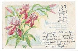Alte Jugendstil Postkarte  ROSA  SCHWERTLILIEN