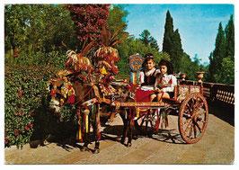 Alte Foto Postkarte SIZILIEN Carretto Siciliano