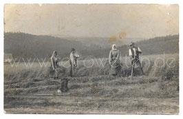 Alte Foto Postkarte BAUERN BEI DER HEUERNTE, Rauschenbach 1911