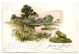 Alte Lithographie Sonnenschein Postkarte FLUSSLANDSCHAFT MIT FROSCH 1905