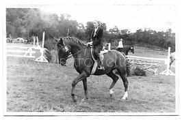 Alte Fotografie Postkarte JUNGE REITERIN AUF PFERD BEIM REITTURNIER Reitsport 1940er Jahre