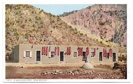 Alte Postkarte NEW MEXICO A Mexican home