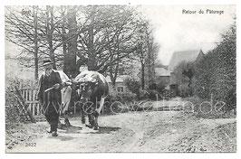 Alte Fotografie Postkarte RETOUR DU PÂTURAGE Landwirt mit Kühen