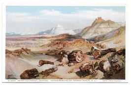 Alte Künstler Postkarte ARIZONA Petrified Forest (nach einem Gemälde von Thomas Moran)