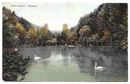 Alte Postkarte BADEN-BADEN Waldsee mit Schwänen, 1909