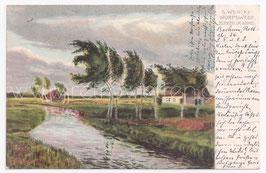 Alte Künstler Postkarte WORPSWEDE - BIRKEN IM WIND, signiert S. Wenke 1904