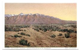 Alte Künstler Postkarte ARIZONA The Desert (nach einem Gemälde von E. M. Dressler)