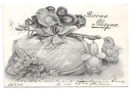 Alte Lithografie Postkarte  OSTERN - BUONA PASQUA Küken mit Ostergeschenk 1906