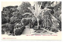 Alte Postkarte LAGO DI COMO Cadenabbia - Giardino della Villa Carlotta