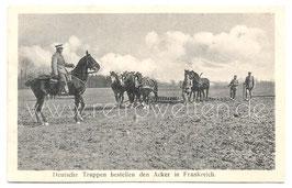 Alte Feldpostkarte DEUTSCHE TRUPPEN BESTELLEN DEN ACKER IN FRANKFREICH, 1916