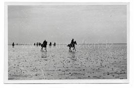 Alte Fotografie Postkarte REITER AUF DEM NORDSEE-WATT BEI REGEN
