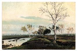 Alte Künstler Postkarte AUS DEM OLDENBURGER LAND - MOORLANDSCHAFT, 1903