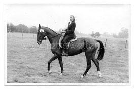 Alte Fotografie Postkarte JUNGE TURNIERREITERIN AUF PFERD, 1940er Jahre