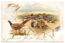 Alte Lithographie Sonnenschein Postkarte LANDSCHAFT MIT WEIZENFELD UND FASAN 1905