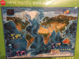 Puzzle Satellite Map