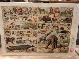 Puzzle 1000 Pièces Encyclopedia - Animaux Sauvages