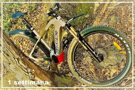 1 Woche (7 Tage) eine Hochleistungs-Mountain-E-Bike anmieten: Moustache 24/7 Trail