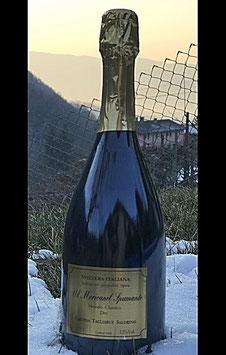 """""""Champagne"""" del Ticino (Svizzera Italiana): Vino frizzante tipo Champagne :Mericanel Spumante quantità limitata (300 bottiglie)"""