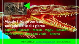 Viaggio a Porto Ceresio, visita di tre musei e noleggio di 2 biciclette con guida turistica.