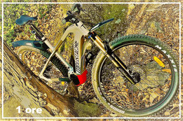 1 Stunde Vermietung Mountain E-bike Moustache 24/7 Trail