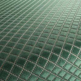 visione grün CA1438/030