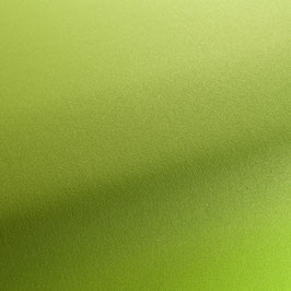outdoors lime CH3050/030
