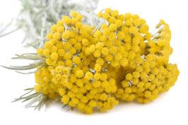 Ätherisches Öl Strohblume 1 ml  100 % naturrein