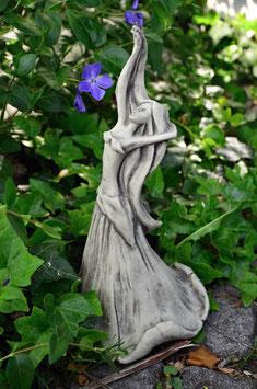 Blütentänzerin Ackerwinde