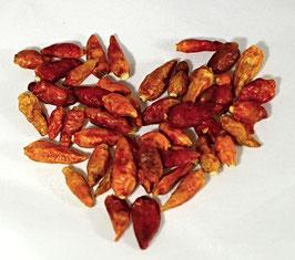 Chilis ganz kleine Schoten  50 g