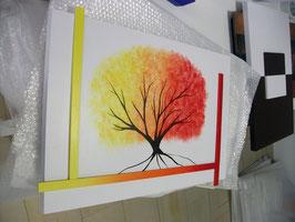 Colección eco