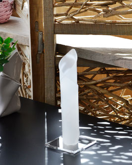 Exklusive Acrylglas Stabvase Calla in Satin