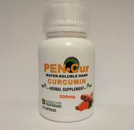 PEN-Cur Cap120 - 500mg