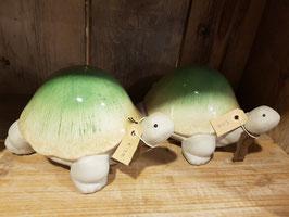 Stenen schildpad