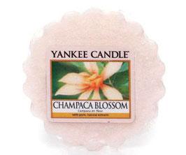 Champaca Blossom Melt
