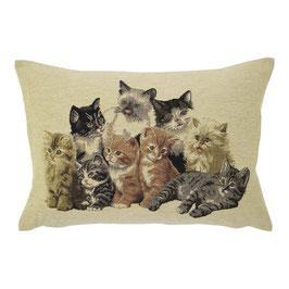 Gobelin Kussen Katten