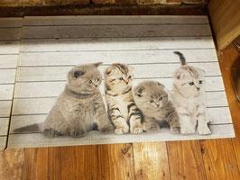 Deurmat Kittens