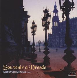 Souvenir a Dresde