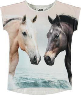 Gemustertes T-Shirt Ragnhilde von Molo mit Pferde-Print auf der Vorderseite