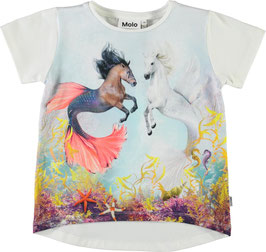 Molo T-Shirt Risha in Sea Ponies