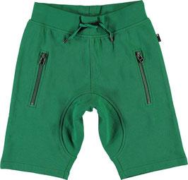 MOLO Shorts Ashtonshort Grün für Jungen