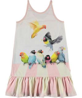 Gemustertes Kleid von Molo Love Birds