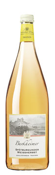 2020er Spätburgunder Weißherbst Qualitätswein trocken