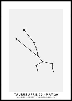 Taurus, Poster