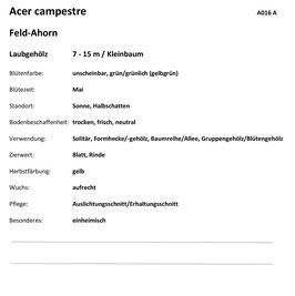 Modul G1 Ergänzend zu Serie 1 und 2 mit Lehrbeginn bis 2012 ohne Ordner Rückseite beschriftet gem. Angaben Jardin Suisse