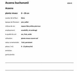 Série 7.4, 815074, 600 illustrations paysagiste 2e et 3e année, avec description selon JardinSuisse, inkl. 4 classeurs