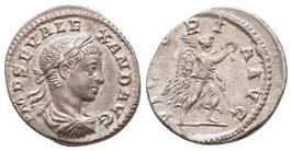 Severus Alexander - Denar - Victoria - vzgl.