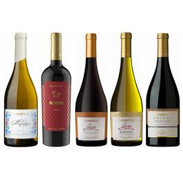 クリスマス・年末年始用おすすめワイン5本セット